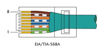 350px-RJ-45_TIA-568A_Left.png
